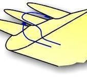 Нажмите на изображение для увеличения Название: birdwing_detail1.jpg Просмотров: 17 Размер:7.0 Кб ID:22929