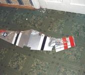 Нажмите на изображение для увеличения Название: wing.jpg Просмотров: 40 Размер:93.5 Кб ID:36819