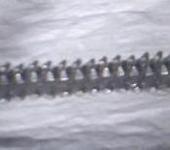 Нажмите на изображение для увеличения Название: гус Т-72 из жести сторона гребней.JPG Просмотров: 2233 Размер:16.7 Кб ID:241992
