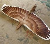 Нажмите на изображение для увеличения Название: alula_bird_up.jpg Просмотров: 80 Размер:85.0 Кб ID:265706