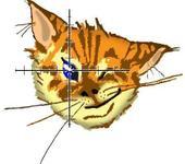 Нажмите на изображение для увеличения Название: TomcatL-8c4-4.JPG Просмотров: 10 Размер:30.8 Кб ID:452117