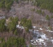 Нажмите на изображение для увеличения Название: лес 2.jpg Просмотров: 68 Размер:77.1 Кб ID:561375
