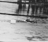 Нажмите на изображение для увеличения Название: Чемпионат РСФСР Пенза 1973_27.jpg Просмотров: 40 Размер:48.2 Кб ID:568546