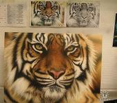 Нажмите на изображение для увеличения Название: тигр опять.jpg Просмотров: 312 Размер:87.1 Кб ID:572012