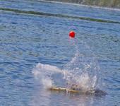 Нажмите на изображение для увеличения Название: Matts 009 2012 - May 19_ 2012.jpg Просмотров: 64 Размер:82.2 Кб ID:746806