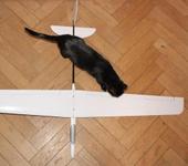 Нажмите на изображение для увеличения Название: glider.jpg Просмотров: 174 Размер:163.3 Кб ID:1005892