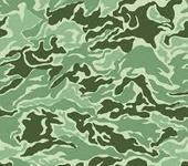 Нажмите на изображение для увеличения Название: камуфляж зеленый.jpg Просмотров: 44 Размер:12.9 Кб ID:1040298