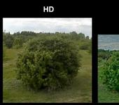 Нажмите на изображение для увеличения Название: pal-hd-1 крупно.jpg Просмотров: 41 Размер:42.0 Кб ID:1542107